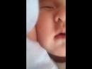 Молдир спит