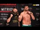 Новый чемпион FIGHT NIGHTS, анонс боя Минеев vs. Исмаилов, боец Bellator готов подраться бесплатно