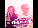 Dj Nil feat. Mischa - Ты Не Будешь Знать (Tony Kart feat. Syntheticsax &amp Lexan D Official Extended Remix)