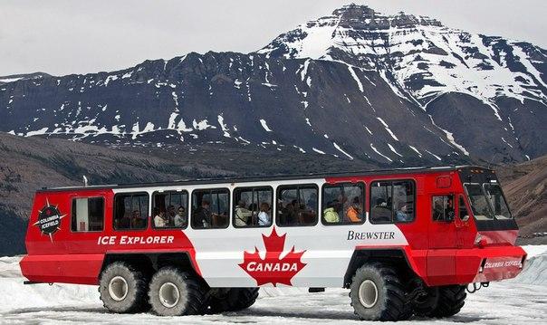 Вездеход Foremost Terra Bus