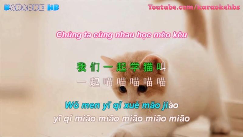 ♩ Học Mèo Kêu | 学猫叫 Lyrics Pinyin [Kara Vietsub]
