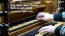 Trio Herr Jesu Christ dich zu uns wend BWV 655 J S Bach Martien de Vos Dinteloord