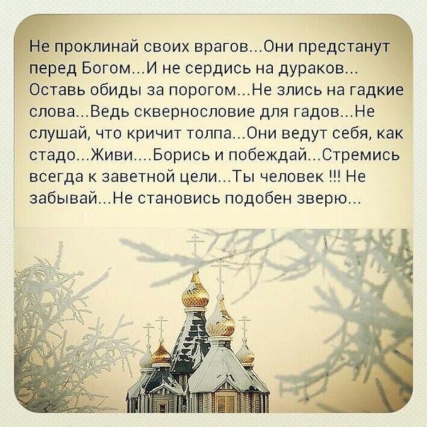 http://cs617416.vk.me/v617416198/1aa9a/tPd47shlEDc.jpg