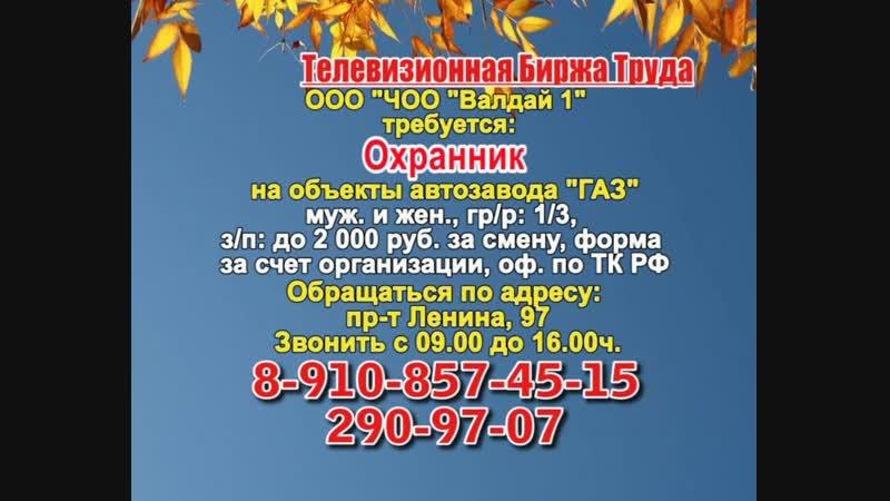 15 ноября _08.30_Работа в Нижнем Новгороде_Телевизионная Биржа Труда