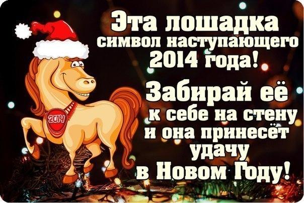 новые фильмы 2014 2015 года смотреть онлайн бесплатно русские фильмы