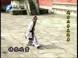 Wang Liping - Wudang Sanfeng Taiji
