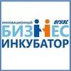 Инновационный бизнес-инкубатор ВГУЭС