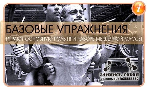 Базовые упражнения в бодибилдинге играют основную роль при наборе мышечной массы...