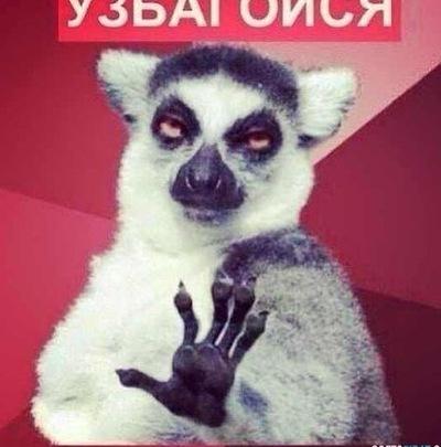 Матвей Пупкин, 10 мая , Москва, id212140005