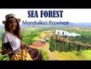 Sea Forest Resort in Mondulkiri Province