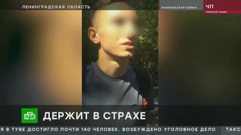 Школьника избивал сверстников в Ленинградской области