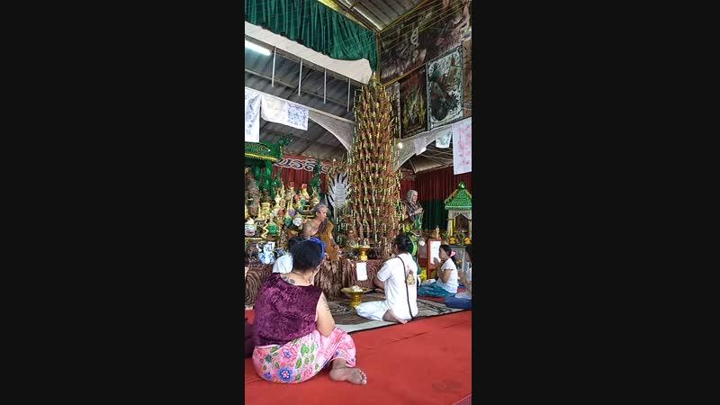 Рыси Нарасимха По, Тайланд.