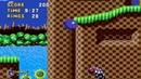 Обзор Sonic Painto edition 2