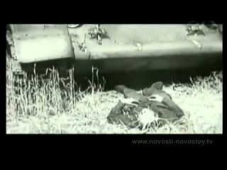 Немецкие солдаты и офицеры о войне, о русских.