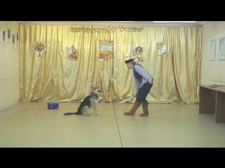 желтые Скурихина Лидия и Грей. Танец пиратов