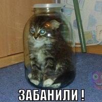 Андрій Лущик, 15 июня 1992, Москва, id159649729