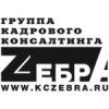 Кадровое агентство Зебра