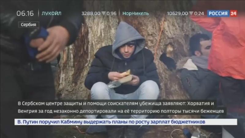 Новости на Россия 24 • Сербия возмущена незаконной депортацией беженцев из Хорватии и Венгрии