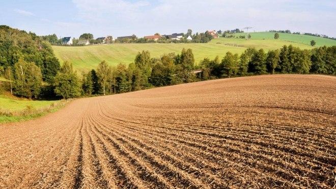 Глава Марий Эл взял под личный контроль сельхозугодия республики