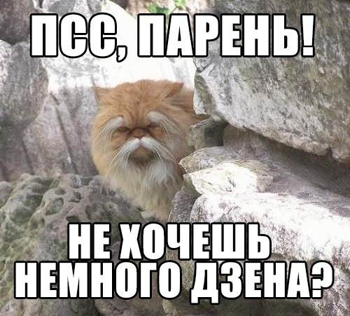 http://cs419627.vk.me/v419627736/b848/oll5fM0op98.jpg