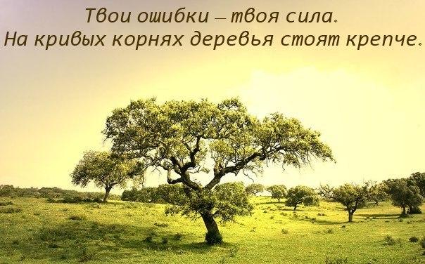 http://cs416120.vk.me/v416120791/ae27/9YCXOy2mo18.jpg