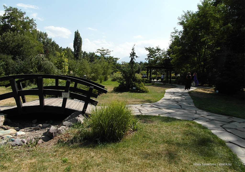 Мостик в японском саду Алматы, Ботанический сад 2018