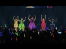 Team Syachihoko Syachi Nobori at Makuhari Messe Event Hall Day 2 2