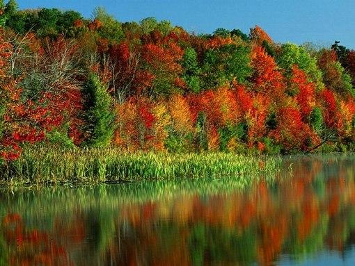 Статусы про осень красивые