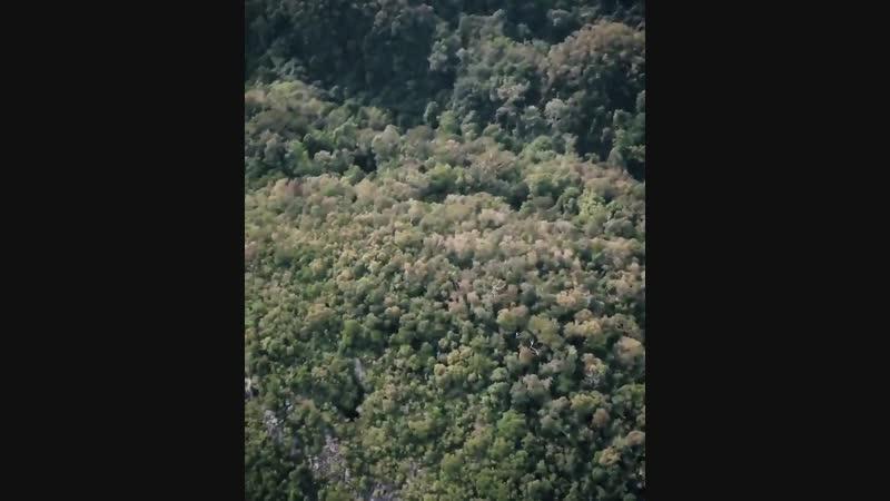 SLUMBERJACK SARAWAK EP Preview