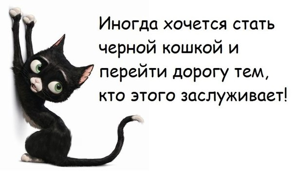 https://pp.vk.me/c408923/v408923810/74ef/rQRQW903sek.jpg