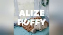 Презентация коврик Мамонтенок из Alize Puffy от @clouds by iris