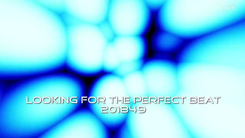 DJ IRVIN CEE Looking for the Perfect Beat 201849