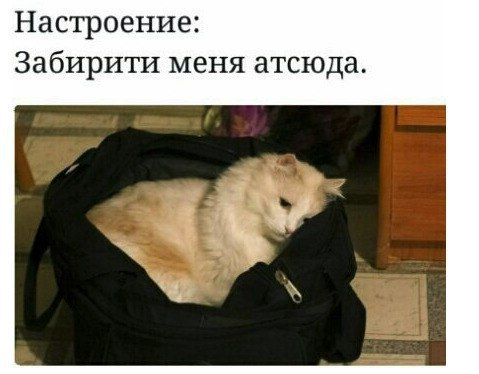 Фото №456241773 со страницы Михаила Кравцова