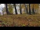 Спускаемся с перевала Пыв в горах уже осень 🍂🍂🍂