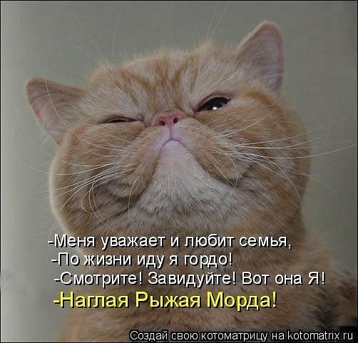 http://cs316818.vk.me/v316818500/413/vXULonFzdY8.jpg