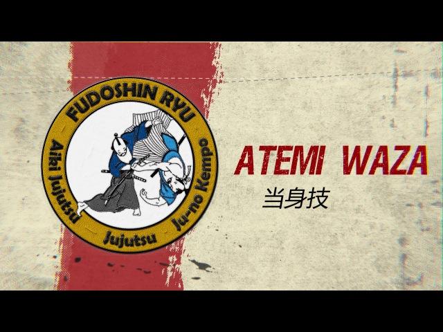 Atemi Waza Self-defense Explained - Fudoshinryu Aiki Jujutsu