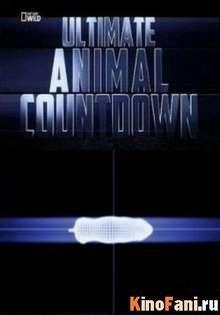 Животные-рекордсмены: Смертоносное оружия / 2012