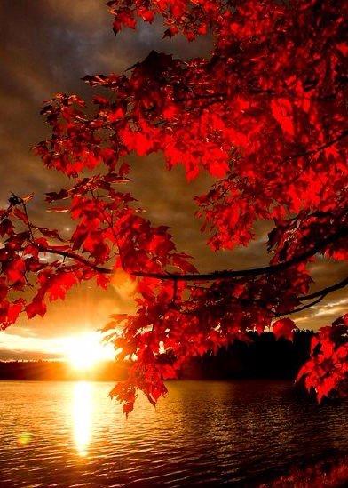 Счастье не зависит от внешних условий. Оно зависит от условий внутренних.
