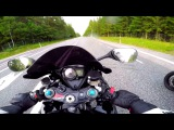 Drag Race - 2015 Kawasaki Z1000 VS Suzuki GSXR 1000 K7