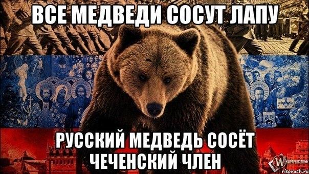 Россия усиливает границу с ОРДЛО, чтобы ограничить проникновение боевиков на ее территорию, - Цигикал - Цензор.НЕТ 2501