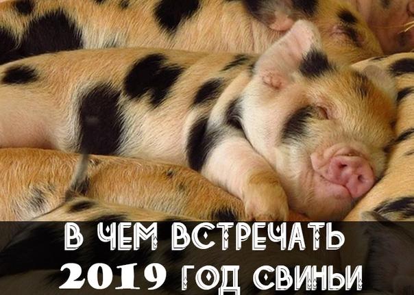 Фото №456271532 со страницы Веры Дадоновой