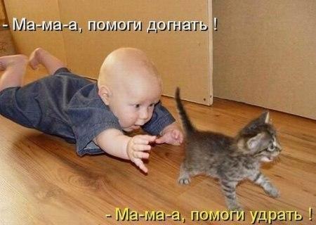 http://cs413117.vk.me/v413117372/18f8/Mxgx1eOo_MQ.jpg