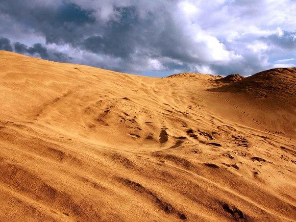 Песчаные дюны в Сычев