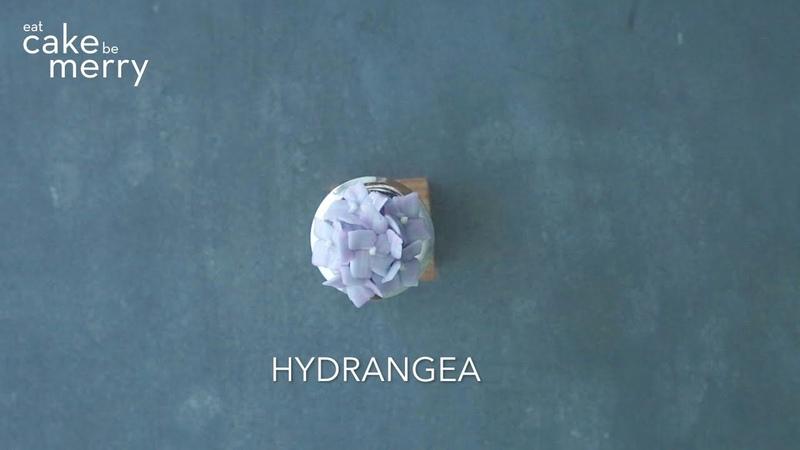 Buttercream flower Hydrangea