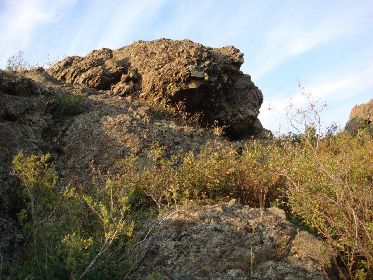 Каменная черепаха (07.12.2013)