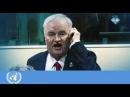 Ратко Младича вывели из зала суда в Гааге за непристойное поведение