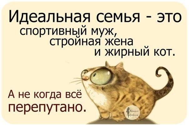 http://cs14113.vk.me/c540100/v540100886/8d92/pNh1qLj2xf8.jpg