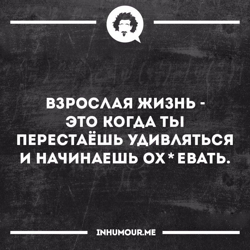 https://cs7051.vk.me/c543108/v543108554/5101b/SxALgepgmko.jpg