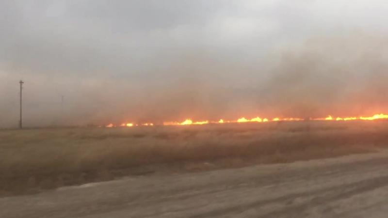 Горят поля возле поселка Кубанка (Инцидент Барнаул)