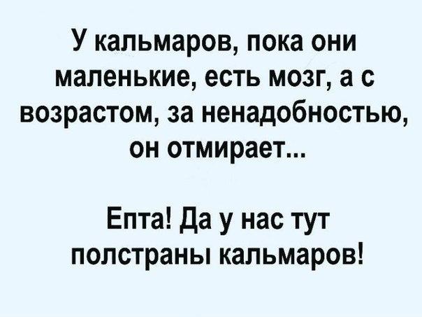 Фото №456283603 со страницы Михаила Лунёва